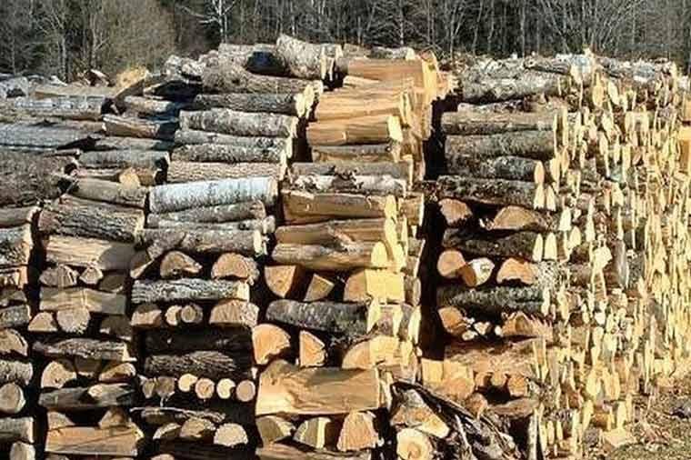 Видеонаблюдение за склад за дърва